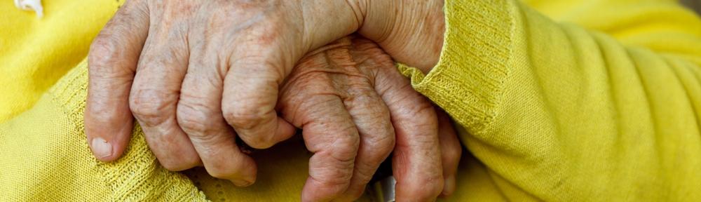 elderly hands holding stick